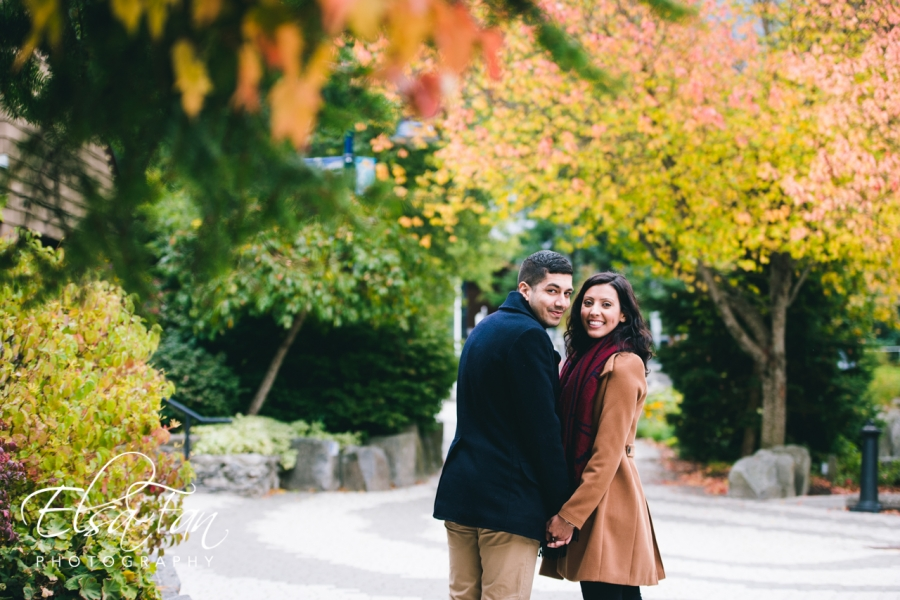 Whistler Proposal Photos
